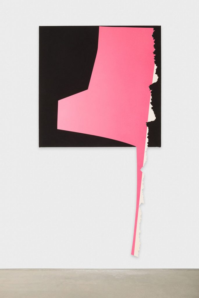 "Kim Fisher, ""Long Foot Pink"