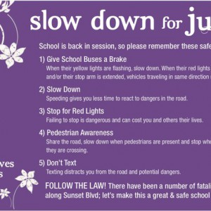 Slow Down for Julia Flyer